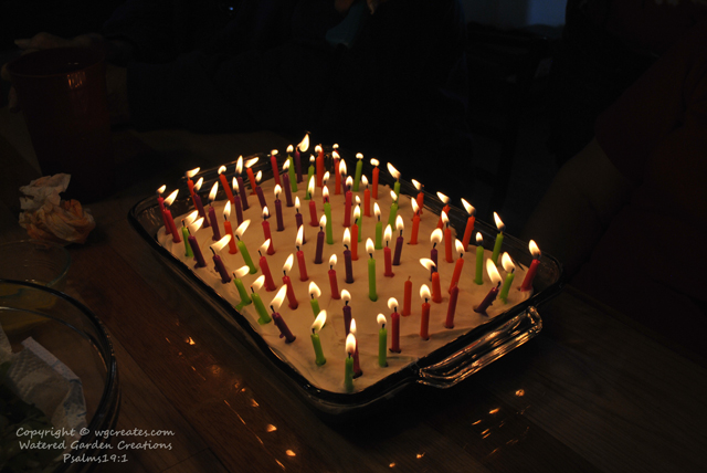 And yes, that is 75 individual candles. Makes it way more fun that way, and she blew them all out in one breath. :)