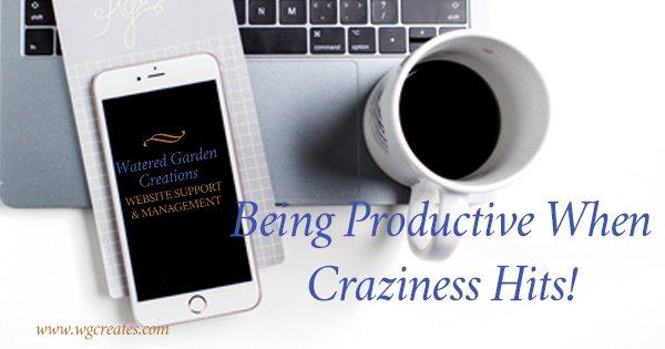 Productivewhencrazinesshits